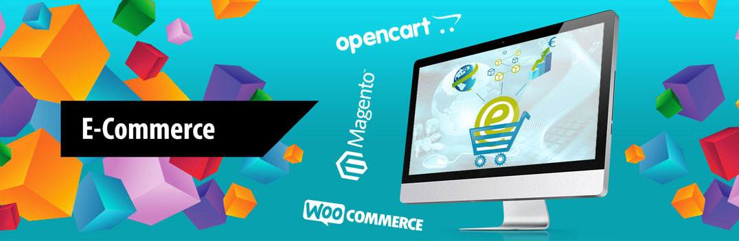 Ecommerce Website Design Delhi,India