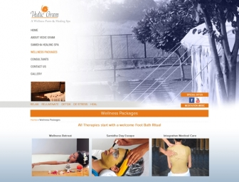 Wellness Packages page view