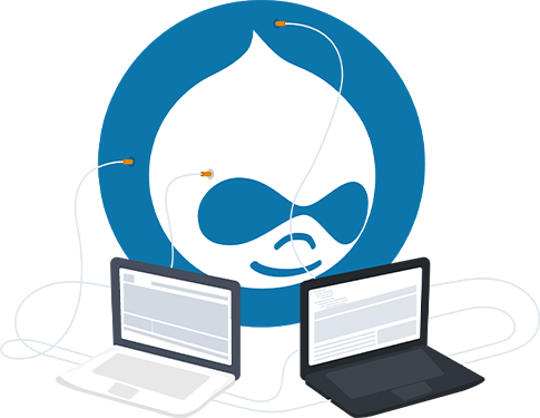 Drupal Development Company in Delhi