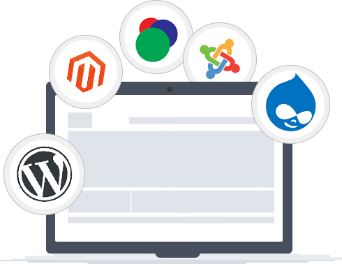 Web Development Company in Delhi, Website Development